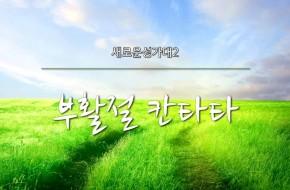 2016-03-27 부활절칸타타 새로운성가대2