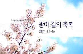 2018-04-22 주일설교 - 광야 길의 축복