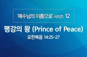 2020-05-24 평강의 왕 (Prince of Peace)